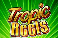 Tropic Reels играть в клубе Вулкан