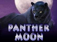 Аппараты Panther Moon Вулкан
